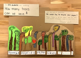 Saving trees with early years
